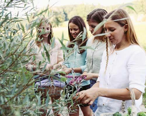 Akademie Modul Heilpflanze Freiraum14 1