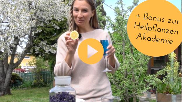 Heilpflanzen Akademie Online Kurs Patricia Purker 1