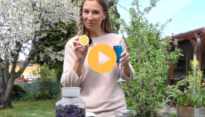 Heilpflanzen Naturkueche Naturkosmetik Kraeuterpaedagogik 1
