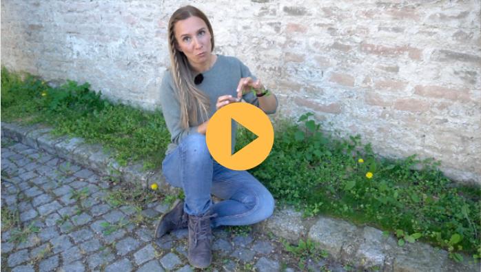 Wildkraeuter erkennen verwendung Naturkueche Naturkosmetik 1